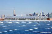 電力は太陽光発電を使用。温室の外側にはパネルがびっしり並ぶ