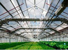 完璧にコンピュータで管理された植物工場が革命を起こす?!