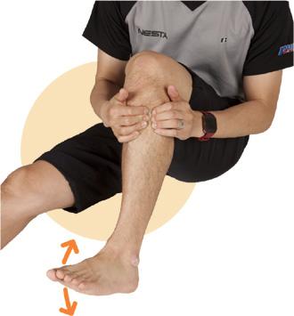 1.脛骨(すね)の外側にある筋肉、前脛骨筋の上部を両手の指で押してほぐします。前脛骨筋は、つま先を上げるときに使う筋肉なので、このときも足首を上げ下げしながら行なうといいでしょう。