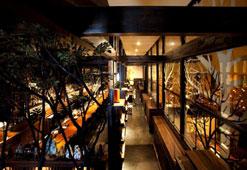 (写真2)店内はおしゃれな空間が広がる