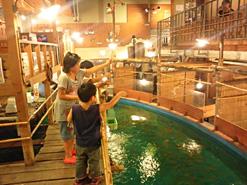 (写真2)店内にある巨大な生けすで釣りが楽しめ、釣った魚をその場で食べることができる