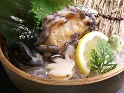 (写真3)松山のブランド食材のひとつ「坊っちゃん島あわび」も楽しめる