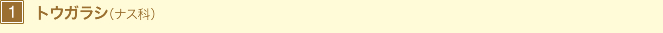 1 トウガラシ(ナス科)