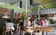 食材だけでなく、店内のインテリアも地元の職人が作ったものを採用。なかには、川にただよっている流木を利用した家具などもある