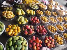 市場で売られる様々な種類のマンゴー。ビタミンをたっぷり含むトロピカルフルーツは台湾の生活には欠かすことができない存在だ