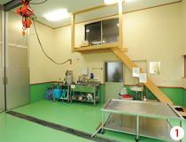 清潔な食肉処理加工場の第一次処理室。泥など大まかな汚れを取り、吊るして内臓を摘出し解体。強酸性水による消毒も欠かせない