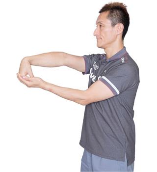 肘はやや外側に向けながら、腕を伸ばします。こちらも左右の腕で。