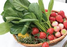 テーブルの上には、川崎市内で作られている農産物「かわさきそだち」も並んだ