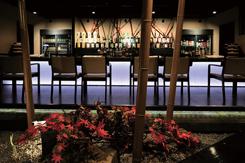 カップルに人気の1階カウンター席。毎月1回、新しい植物を飾り、季節感を演出