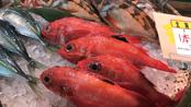 食のプロだけでなく、一般客も訪れる築地魚河岸には、魚介や青果物など新鮮な食材が豊富にそろっている