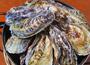 水産会社から牡蠣を直送。旬の鮮魚で常連を増やす!